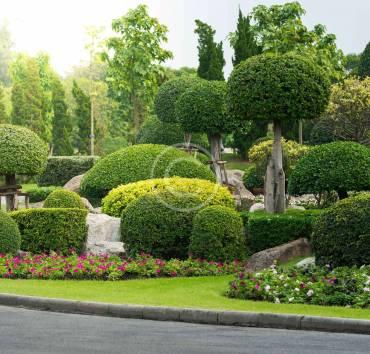 Modern Landscape Design & Techniques